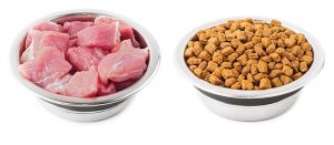 Natural and dry food for pets in metal bowls isolated on white background.